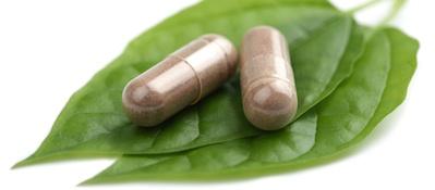 Phytothérapie & Compléments alimentaires