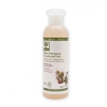 Shampoing naturel réparateur - 250ml