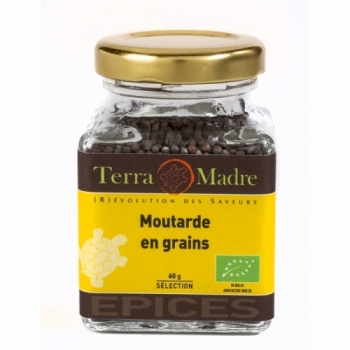 TERRA MADRE - Moutarde Brune en Grains bio