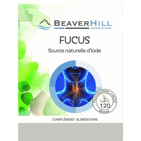 Iode - Fucus - Thyroïde