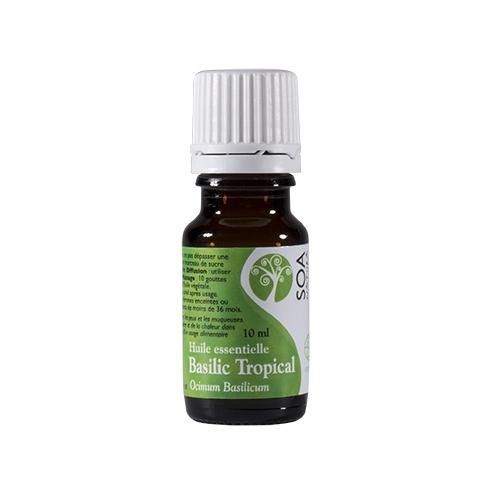 Huile essentielle Basilic Tropical - 10 ml