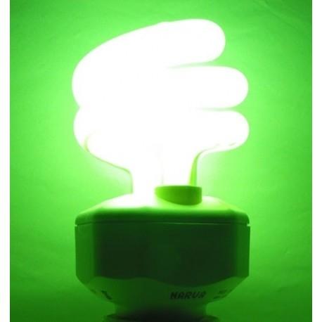ELECOLIGHT - Ampoule de Chromothérapie 15 W – VERT – culot E27