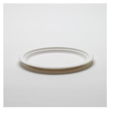 Assiette plate blanche en canne à sucre - 23 cm   Existe en 27 cm -