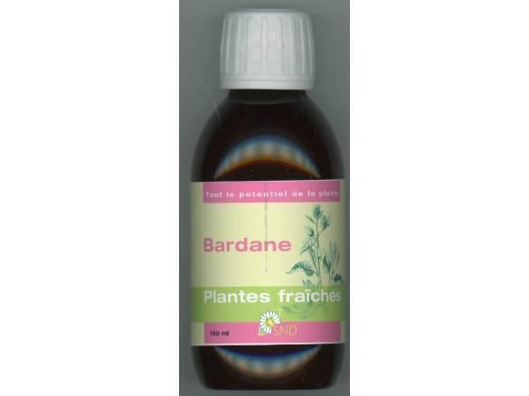 Bardane - Plantes Fraiches - SND