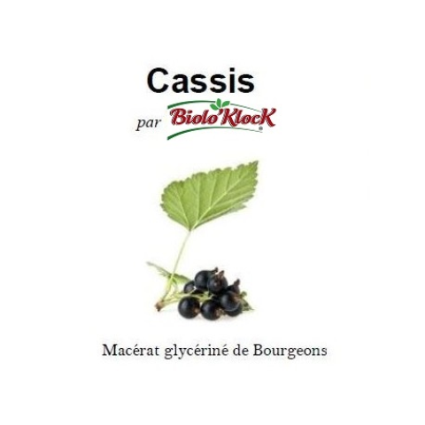 Macérat de bourgeons de Cassis - 15ml