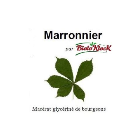 Macérat de bourgeons de Marronnier - 15ml