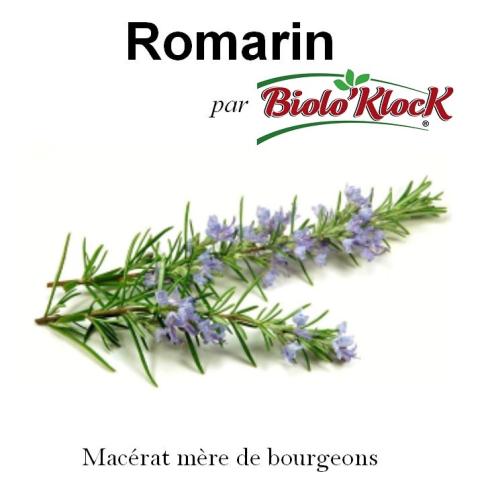 Macérat de bourgeons de Romarin - 15ml