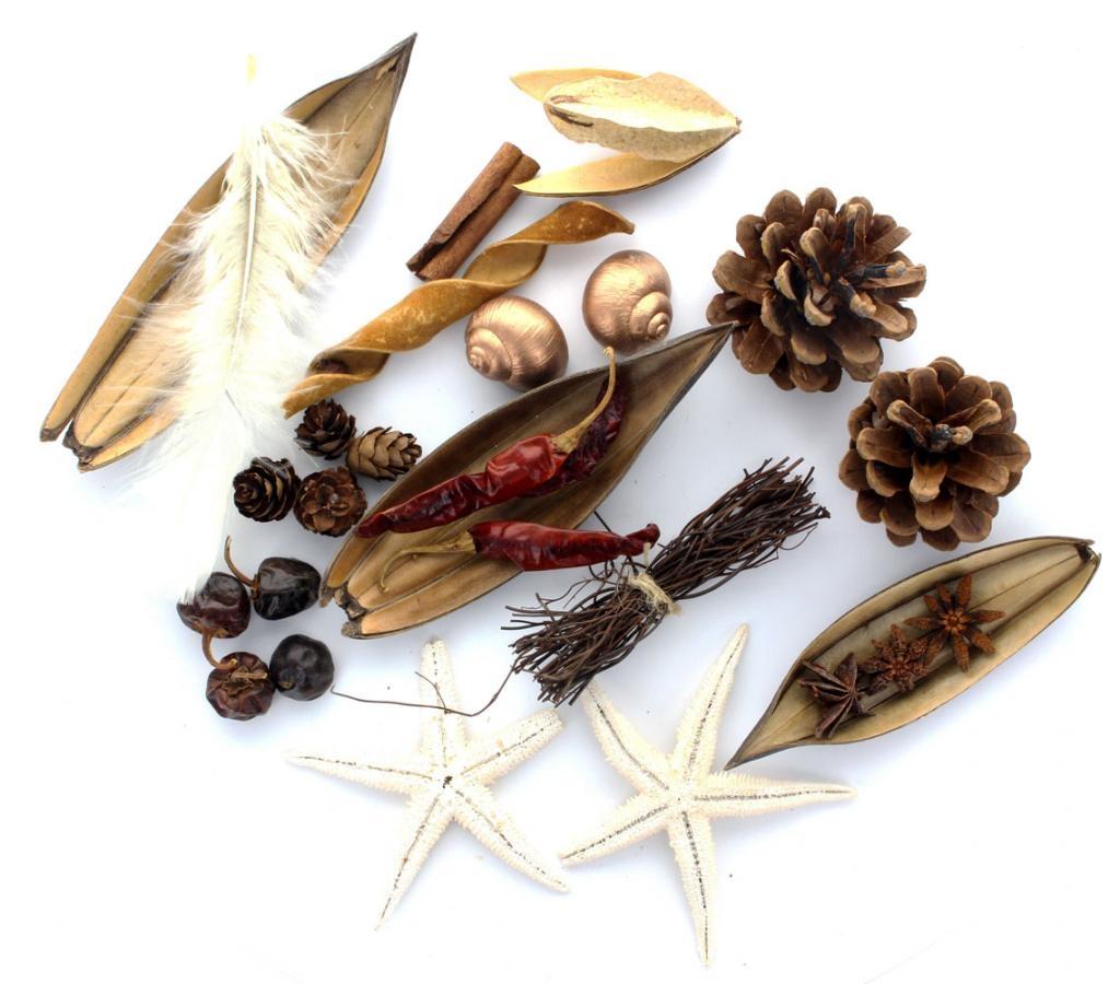 Lots d'éléments exotiques pour pot pourri ou art floral N°2