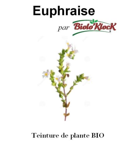 Extrait d'Euphraise - 50ml