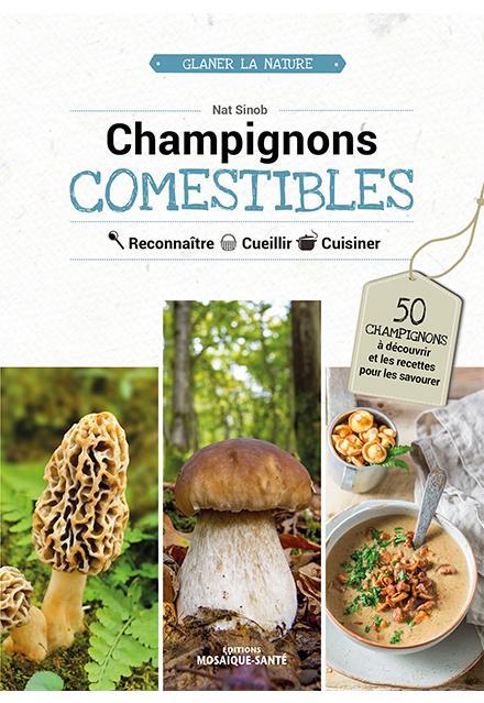 Champignons Comestibles