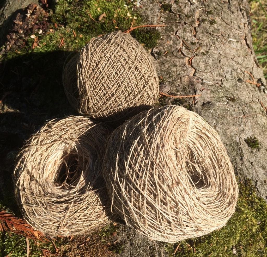 """Résultat de recherche d'images pour """"fibre en ortie"""""""