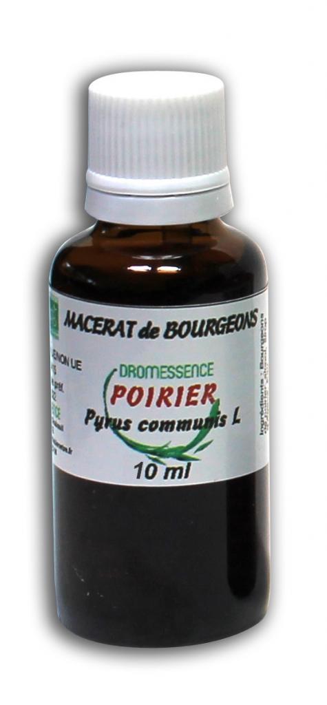 Macérât BIO de bourgeons : Poirier 10 ml DROMESSENCE