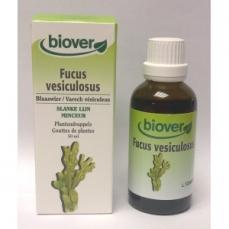 Gouttes de Plantes Teintures Fucus Vesiculosus