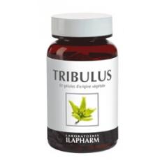 Tribulus terrestris - capacité sexuelle