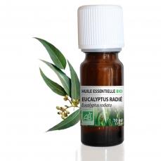 Eucalyptus Radié BIO - Huile essentielle 10 ml