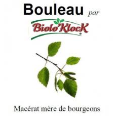Macérat de bourgeons de Bouleau - 15ml