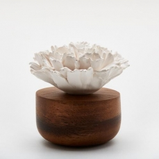 Diffuseur fleur de Corail 1