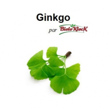 Extrait de Ginkgo - 50ml