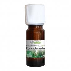 Huile essentielle d'Eucalyptus Radié BIO
