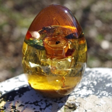 Auraspirit forme oeuf ambre