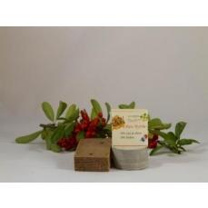 Savon Myrrhe-Palmarosa-Cannelle environ  110 g