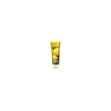 shampooing-a-l-arbre-a-the-citronne-237ml