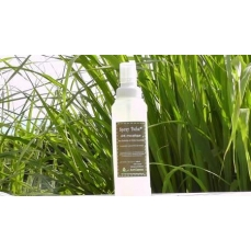 spray anti-moustiques bébé Run'essence