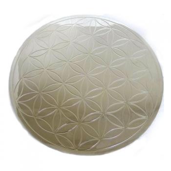 Plaque de métal argenté Fleur de Vie avec double liseré  D.22 cm