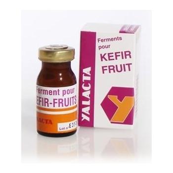 Ferments lactiques pour kéfir de fruits - 4 g