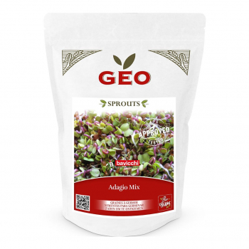 Mix Adagio - Graines à germer bio - 400g - Geo