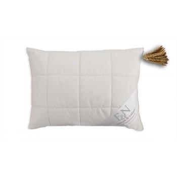 Oreiller en millet avec double couverture 40*60