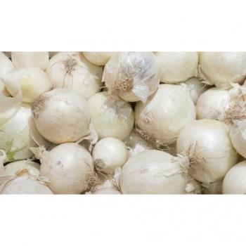 Oignon Blanc - 500g