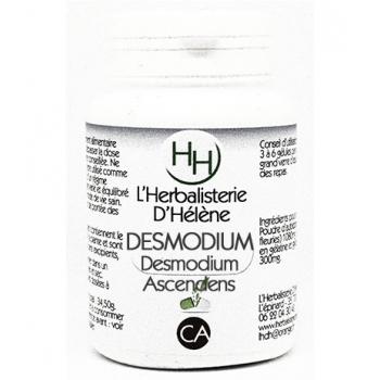 Desmodium (desmodium adscendens)