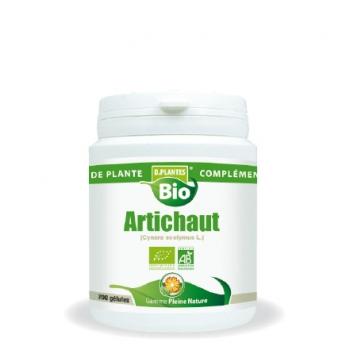 Artichaut Bio