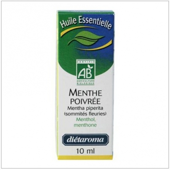 Estragon, Macération de Plantes, 20ml.