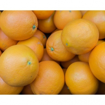 Orange Naveline Bio - 1kg