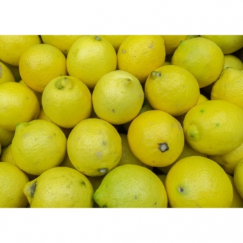 Citron Bio - Piece
