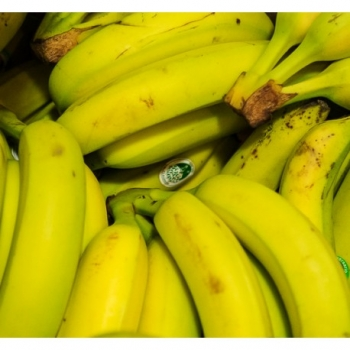 Banane Bio - 1 kg