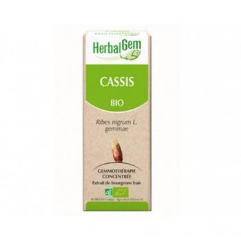 Cassis Bio - 50ml - HerbalGem