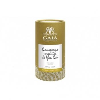 Thé Blanc Bio Bourgeons Argentés de Yen Bai - 30gr - Les Jardins de Gaïa