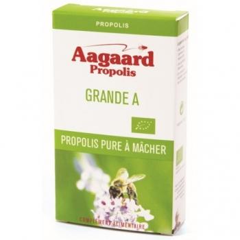 Grande A Propolis Pure à Mâcher - 20g - Aagaard Propolis