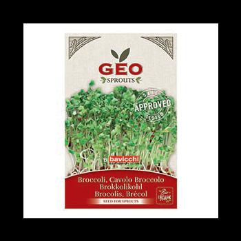 Brocolis - Graines à germer bio - 13g - Geo