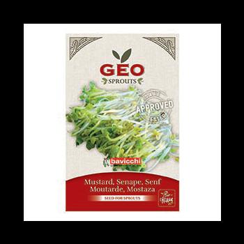 Moutarde - Graines à germer bio - 50g - Geo