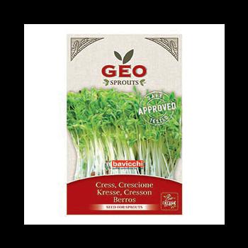 Cresson - Graines à germer bio - 35g - Geo