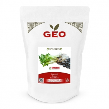 Tournesol - Graines à germer bio - 400g - Geo