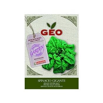 Semences pour Epinard Geant d'Hiver Bio 10g - GEO