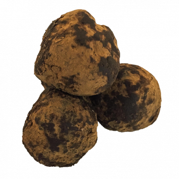 Energyballs Double Cacao-Avoine 140g