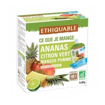 ETHIQUABLE - Purée Ananas, Citron vert, Mangue, Pomme bio & équitable en gourde