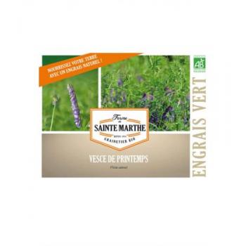 Vesce de Printemps Annuelle pour 50 m² - Engrais Verts reproductibles bio