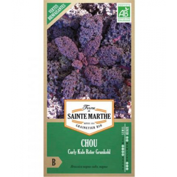 Chou Curly Kale Roter Grunkohl - Semences reproductibles bio